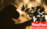 スクリーンショット 2019-11-02 2.08.20.png