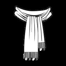 ceci est une écharpe