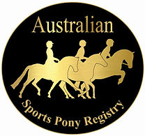 ASPR Gold logo lapel pin 1 comp.jpg