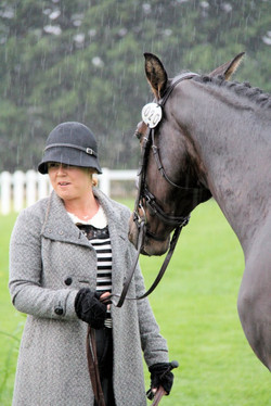 Event horse 020