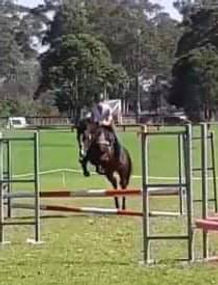 tyrion jump.jpg