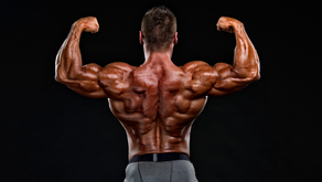My #1 tip for Back training