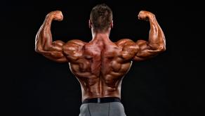 A MELHOR dica para treino de costas