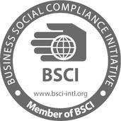 BCSI logo_edited.jpg