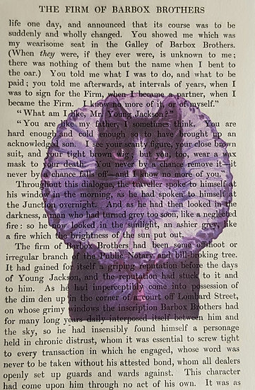 Cat - Vintage Book Page - Art Print - 4 x 6 Inch