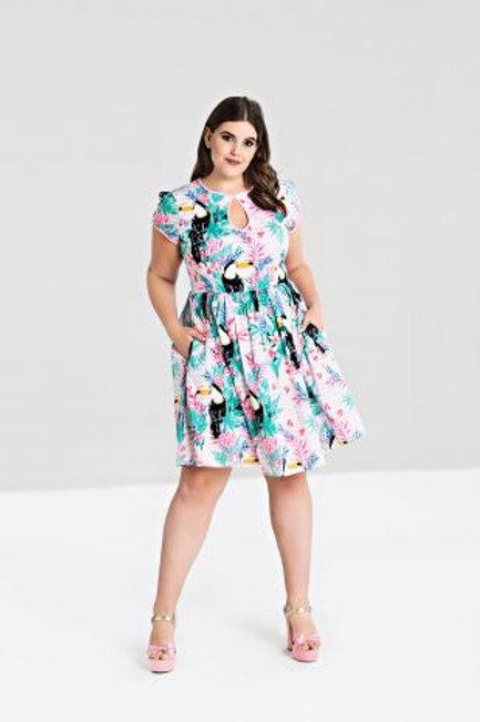 Toucan dress +size
