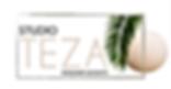 teza logo00001.png