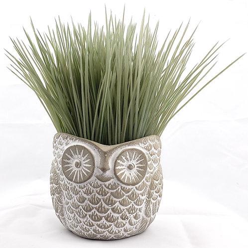 Lulu Cute owl flower pot