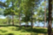 Gibson cove sites.JPG