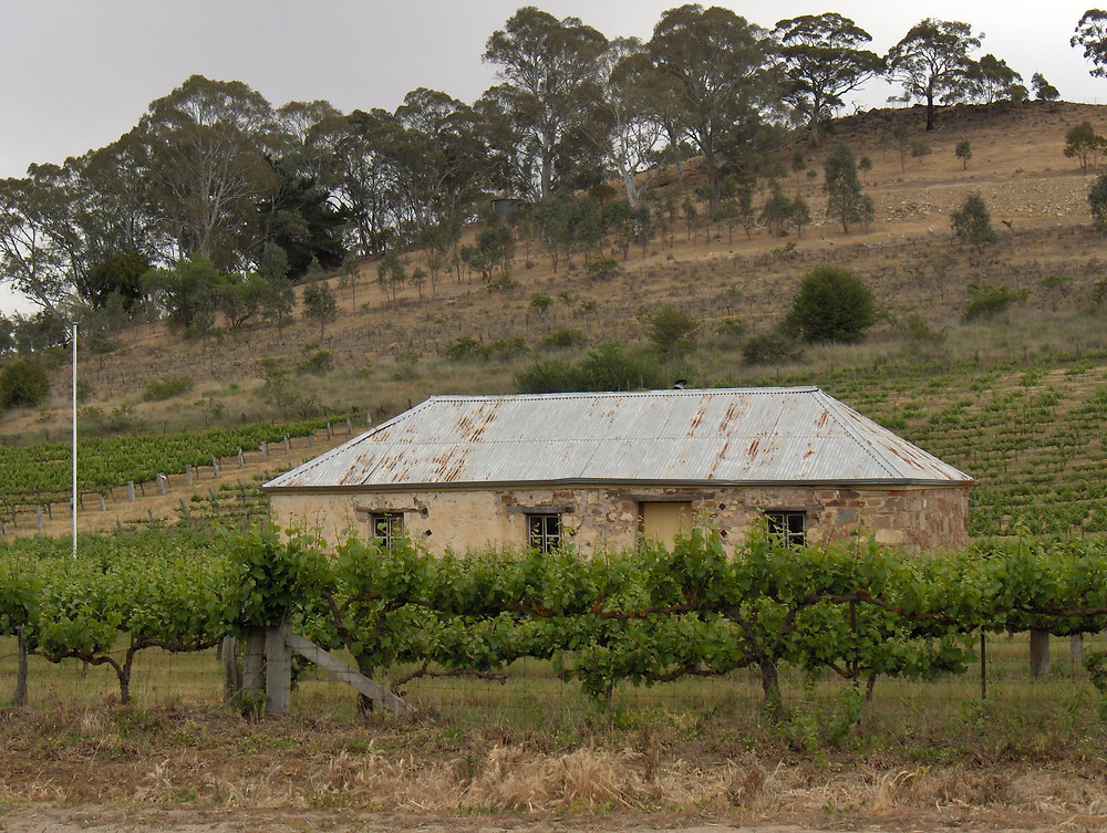Old settler house, Skilly Hills, Watervale SA