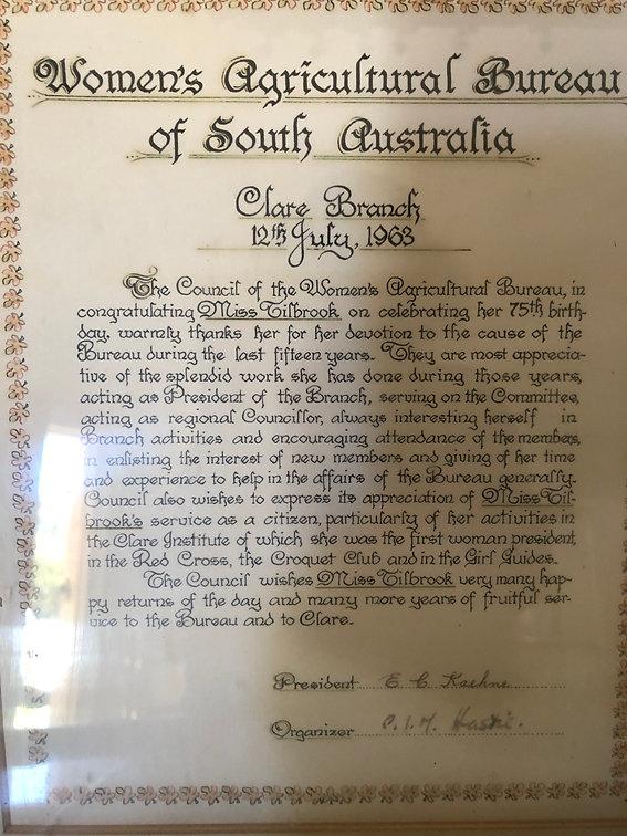 Millie's Discharge Certificate.jpg