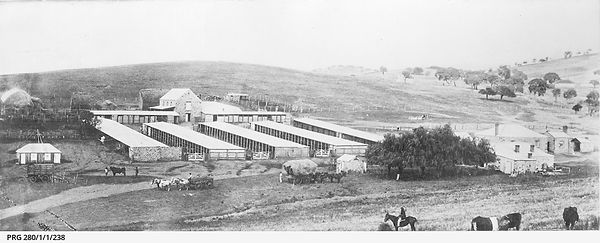 The homestead and farm buildings of Hill