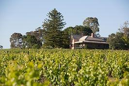 Mitchell homestead at Sevenhill