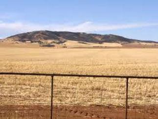 southern Plains.jpg