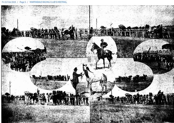 21 Feb 1919 MARTINDALE RACING CLUB MEETING AT MANOORA.png