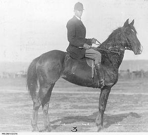 Master of the Adelaide Hunt Club SA.jpg