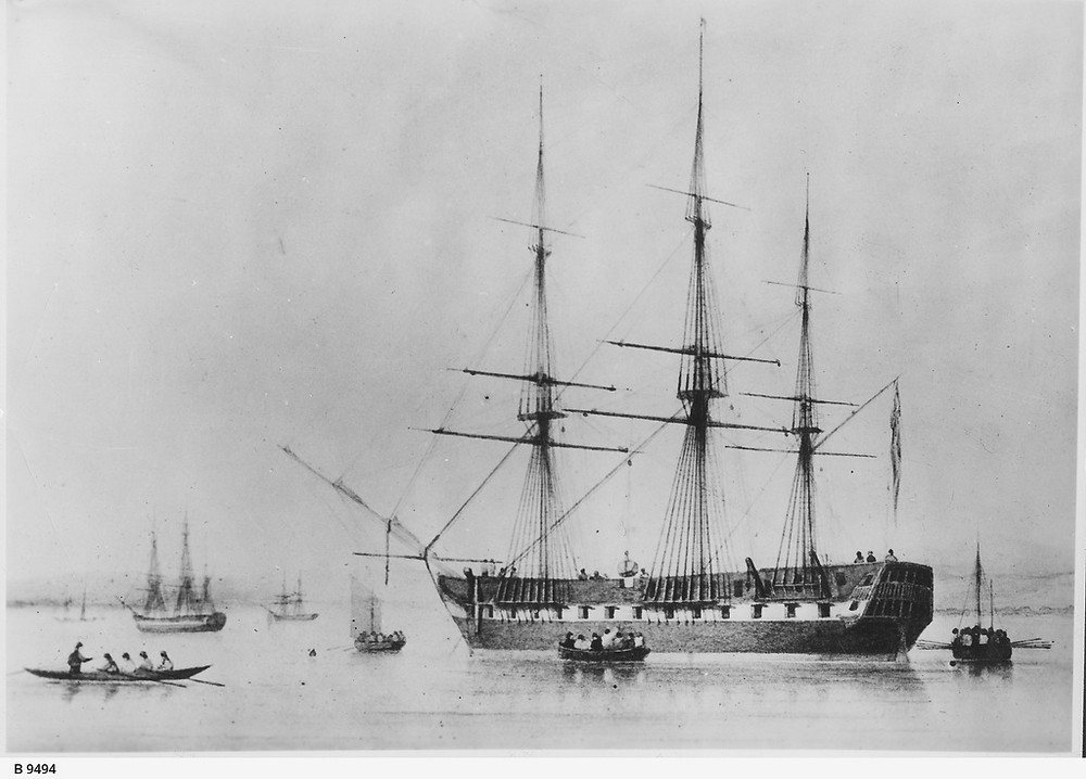 The largest SA immigrnat ship in early days