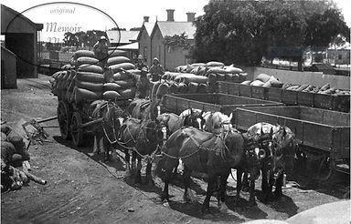Snowtown Heritage Wheat Cart.jpg