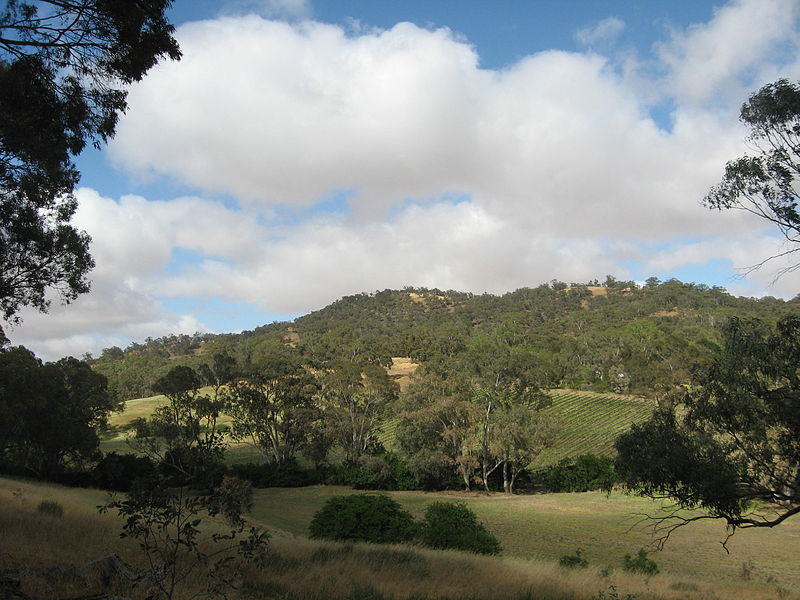 View of the eastern face of Mount Oakden near Penwortham, South Australia