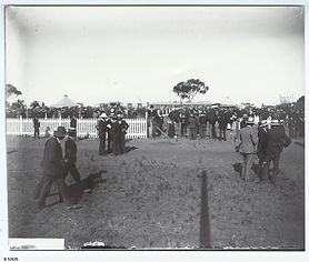 A race day at Martindale race course, Manoora. B-52635.jpeg