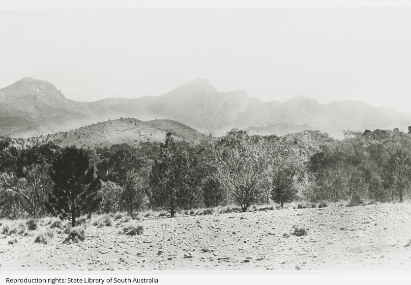 View from the Flinders Ranges.jpeg