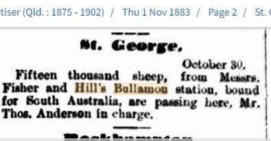 St George 15,000 sheep to SA.jpg