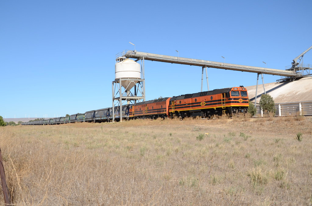 Snowtown Grain Waiting to commence grain loading at Snowtown Viterra siding is 2212-CLP8