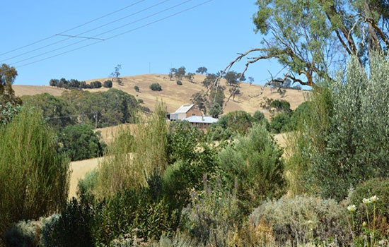 Kadlunga homestead in the rolling hills of Mintaro SA