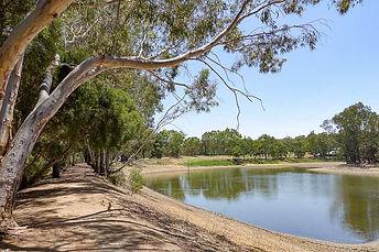 Gleeson-Wetlands.jpg