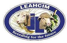Leachim logo.jpg