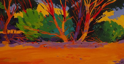 Trees in Snowtown-p2031296jpg.JPG