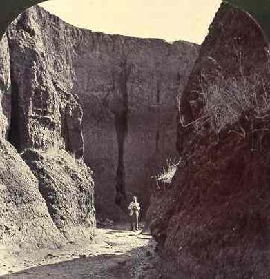 'A canyon, Blyth Plains.' One half of Henry Tilbrook's stereo pair. Soil erosion near Kybunga, c.1900.
