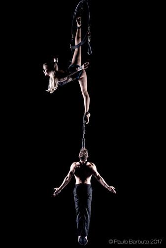 Aerial Swing