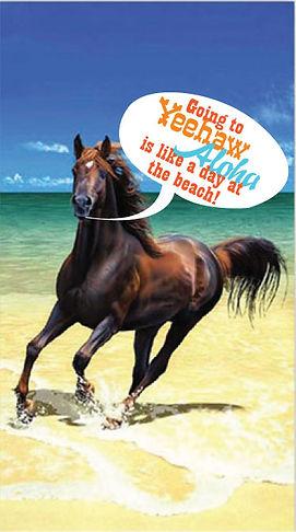 beach-horse.jpg