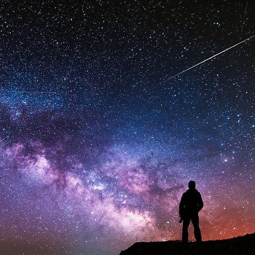 Stardust Voyage Spaceflight Memorial