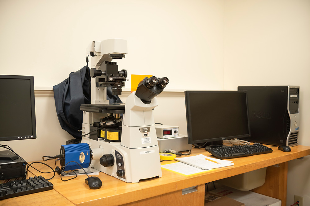 The Batman, a microscope of the Cole Science Center of Hampshire College