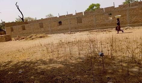 building construction - March.jpg