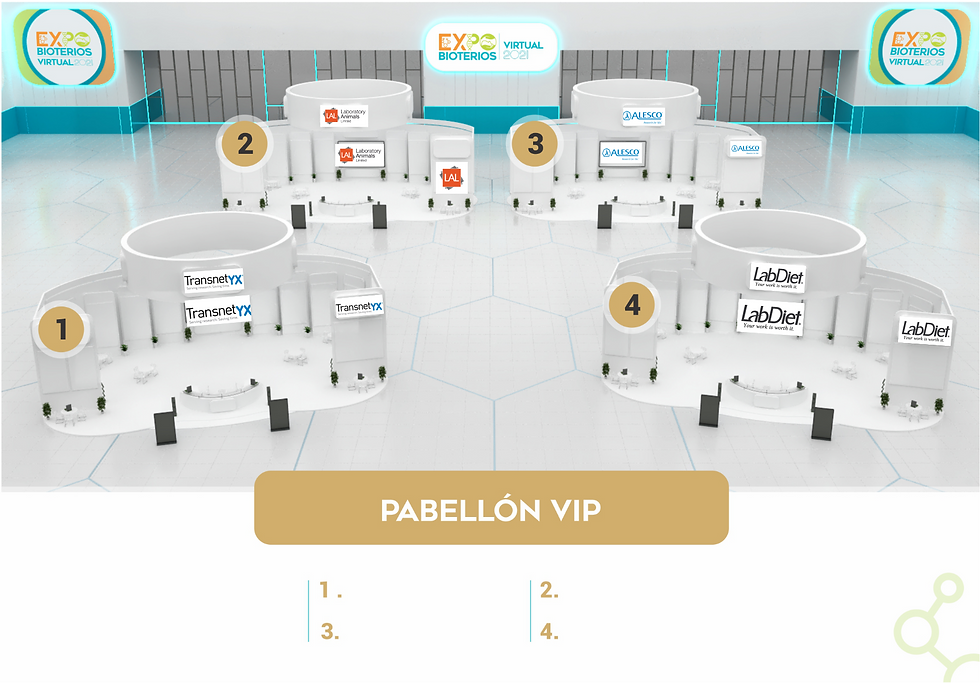 1-FOTO WEB VIP-página001.png
