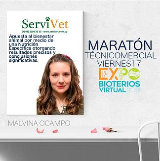 9- SERVIVET MARATÓN -página001.png