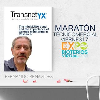 8- TRANSNETYX  MARATÓN -página001.png