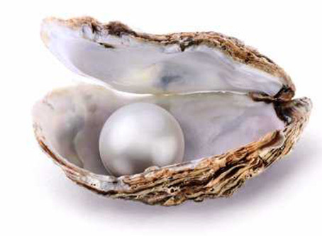 The Surprising Identity of the Pearl of Great Price!