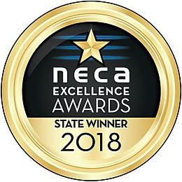 NECA_2018_Exc_GoldMed_StateWin_CMYK.JPG