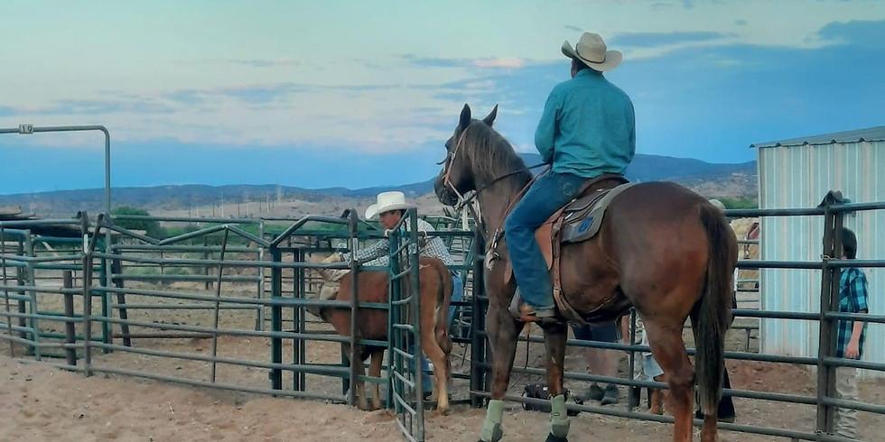 The Rodeo at Tamaya - Aug 12th