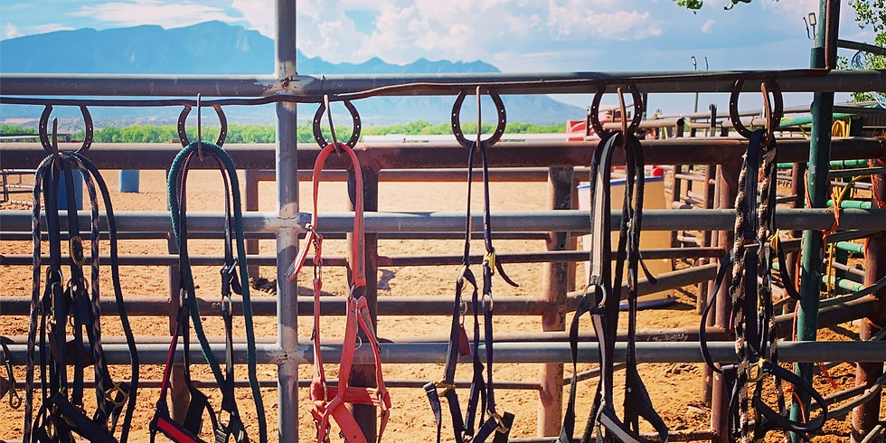 The Rodeo at Tamaya - July 1st