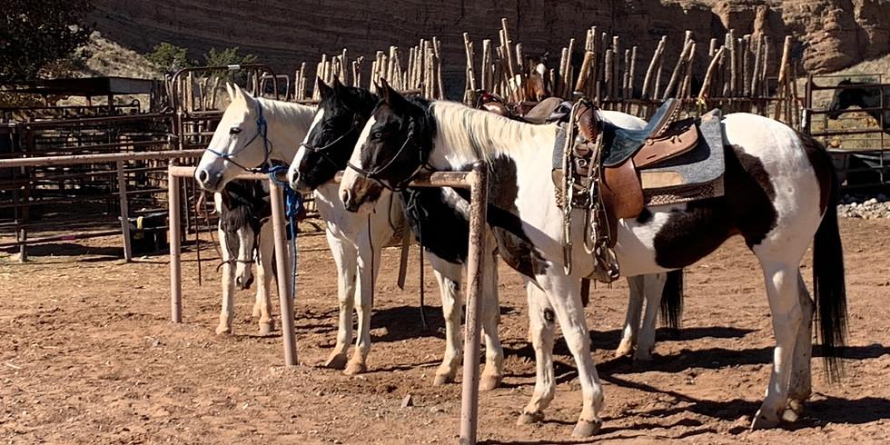 The Rodeo at Tamaya - Aug 26th