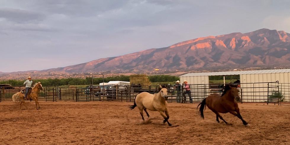 The Rodeo at Tamaya - June 24th