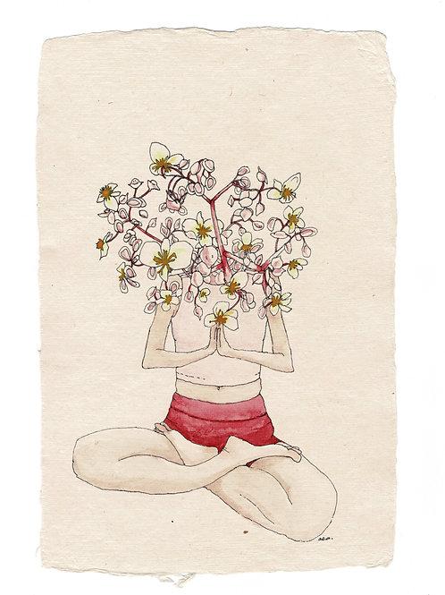 Flowerhead yogi, 4