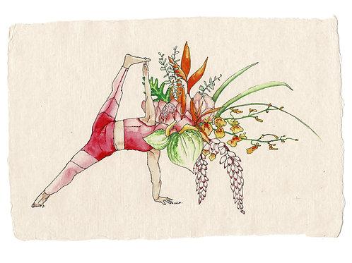 Flowerhead yogi, 1