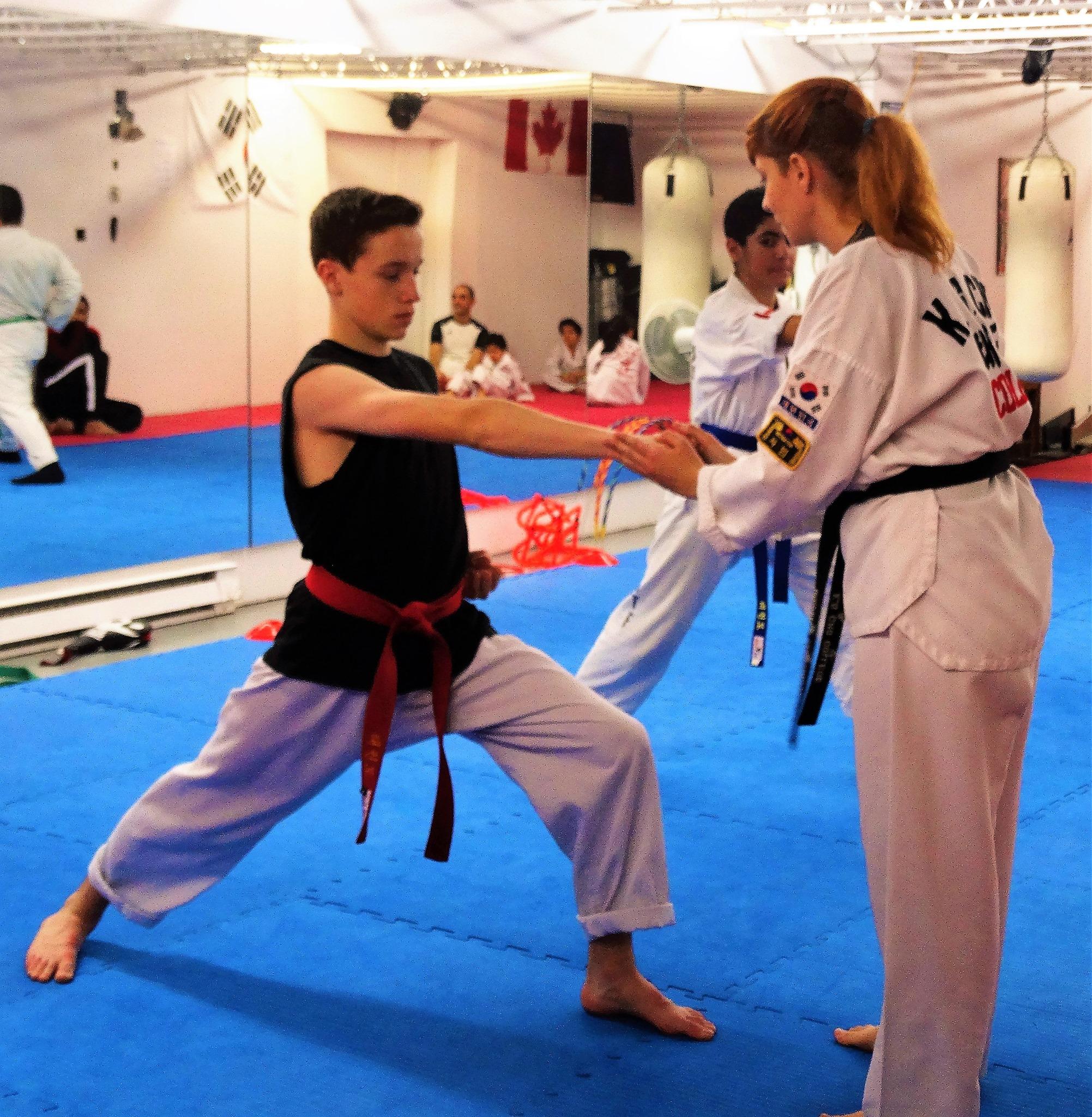 Photos taekwondo 2017 (3)