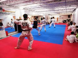 Photos taekwondo 2017 (8)